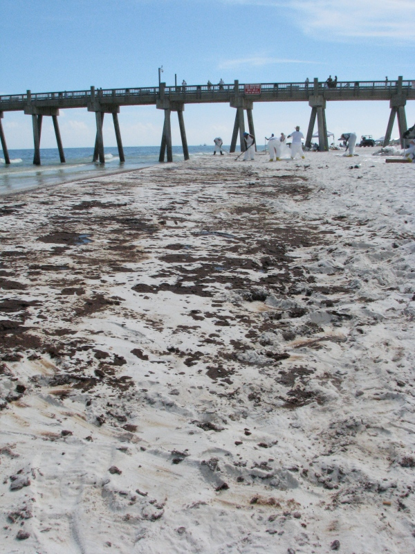 Oil litters the beach in Pensacola